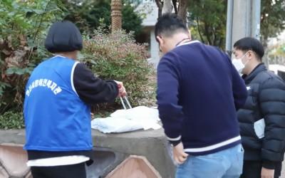 직원들이 화단의 쓰레기를 주워 담는 모습
