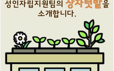 안산시장애인복지관 성인자립지원팀의 상자텃밭을 소개합니다.